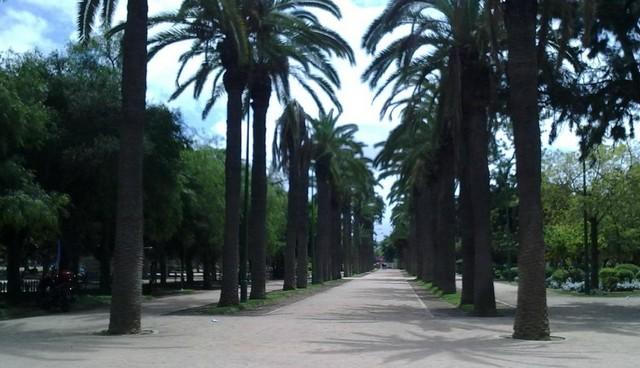 حدائق الدار البيضاء