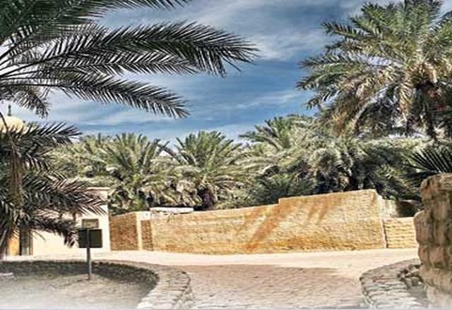 واحة العين في الإمارات