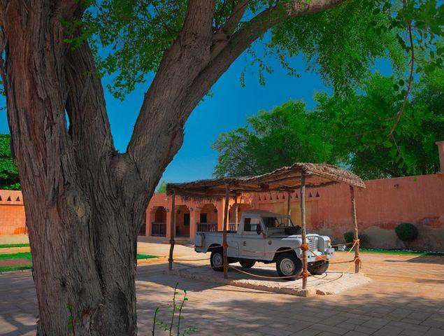 متحف قصر العين المشهور