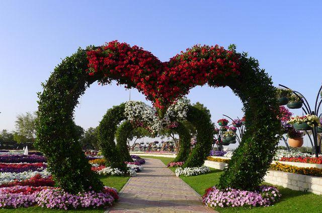حديقة الزهور في العين الامارات