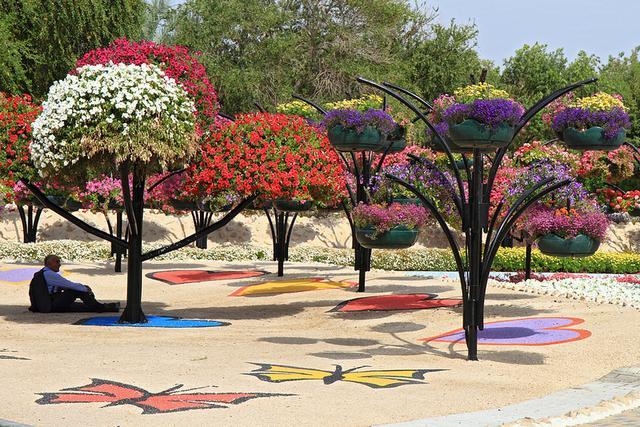 حديقة العين برادايس الامارات