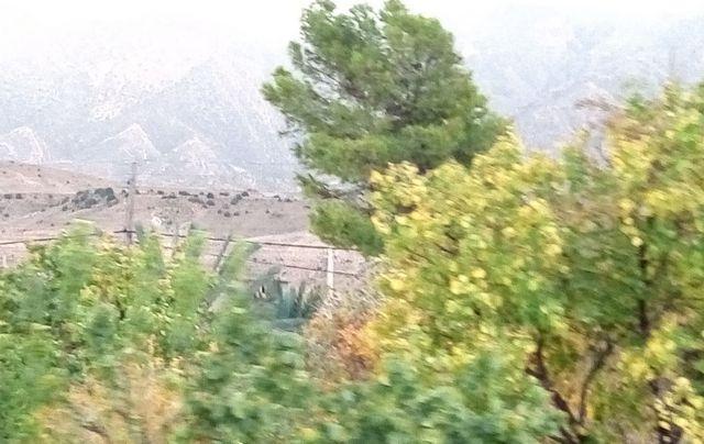 غوفي بسكرة في الجزائر