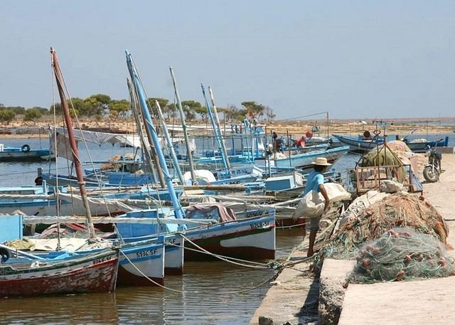 جزيرة قرقنة تونس