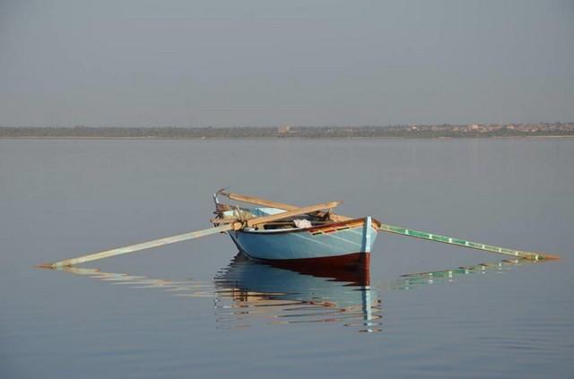 بحيرة تونس