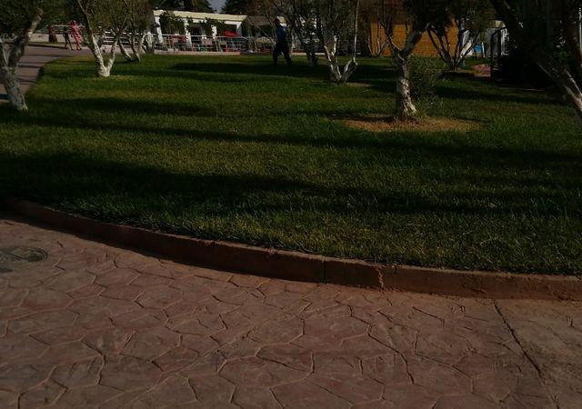 الحديقة المائية بسكرة الجزائر