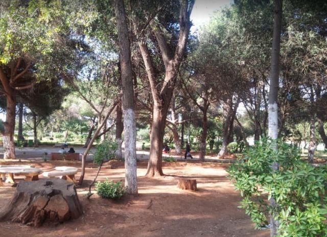حديقة وهران بالصور