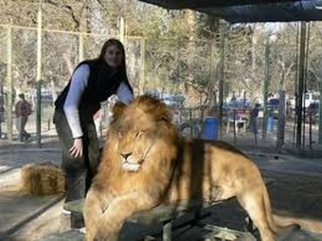 حديقة الحيوانات بجيجل