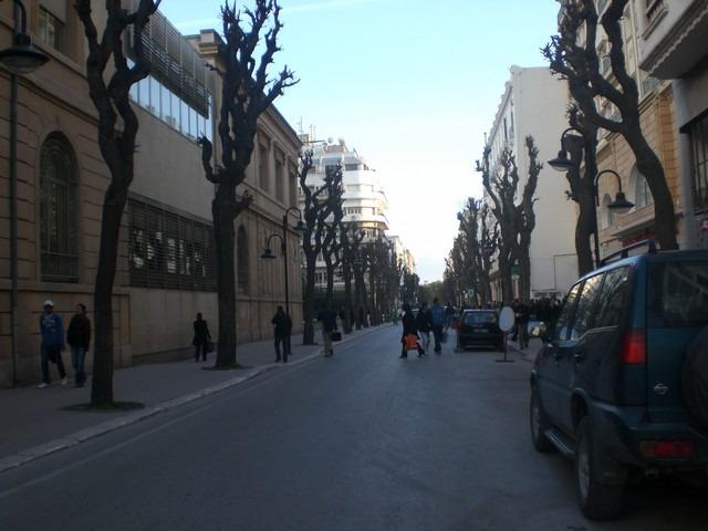 شارع جمال عبد الناصر بتونس