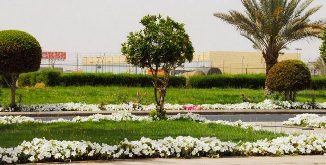 اجمل حدائق في تبوك