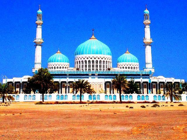 جزيرة دلما في ابوظبي