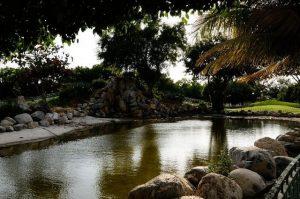 الحديقة اليابانية في مسقط عمان