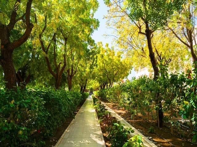 الحدائق في مسقط