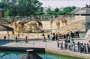 حديقة حيوان في قطر