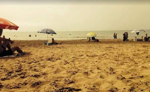 شواطئ في الجزائر العاصمة