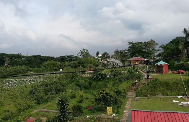 حديقة الفراولة في بونشاك