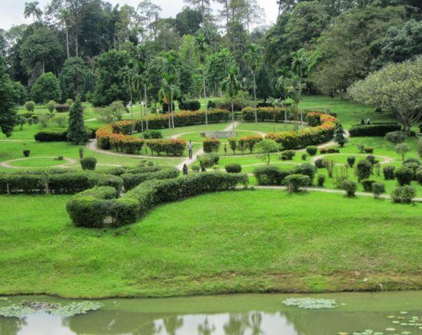 حدائق الشلالات بينانج النباتية