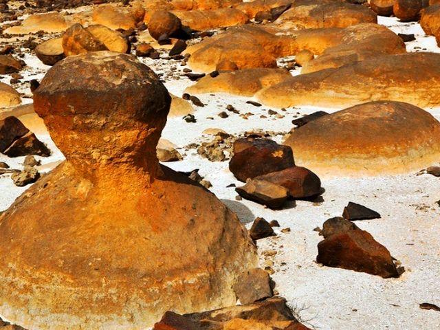 حديقة الصخور في ولاية الدقم