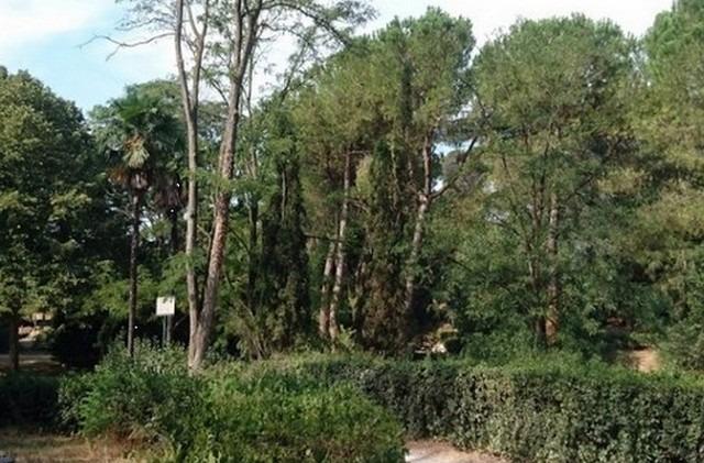 حدائق في روما