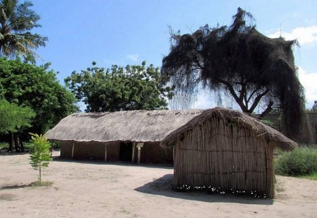 السياحة في تنزانيا دار السلام