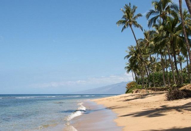 ماوي هاواي
