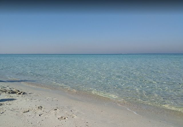 شاطئ العقير بالاحساء