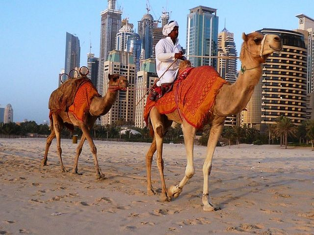 الاماكن السياحية في دبي للعوائل