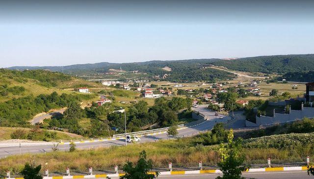 شيلا تركيا