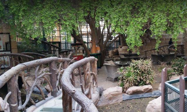 حديقة الحيوانات في أبوظبي