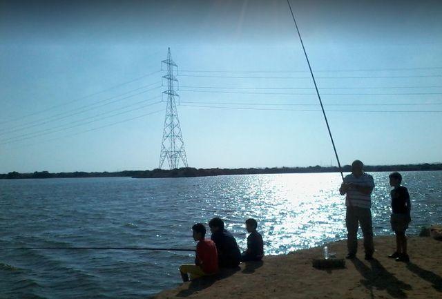 بحيرة مريوط الاسكندرية