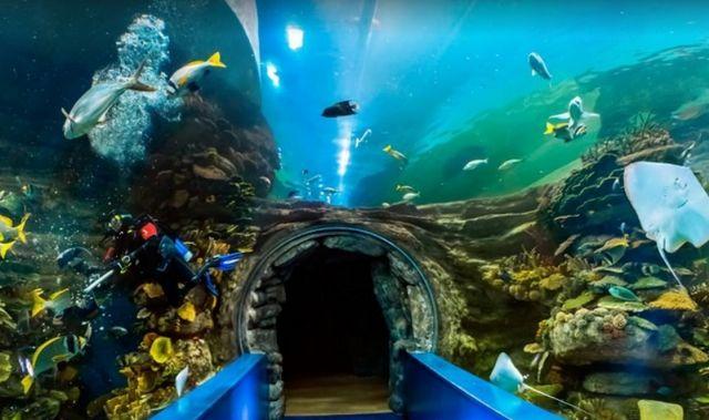 متحف الشارقة البحري