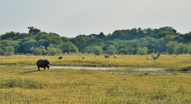 بوتسوانا سياحه