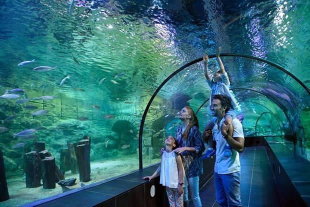 ملاهي مائية اسطنبول - مدينة الالعاب المائية في اسطنبول