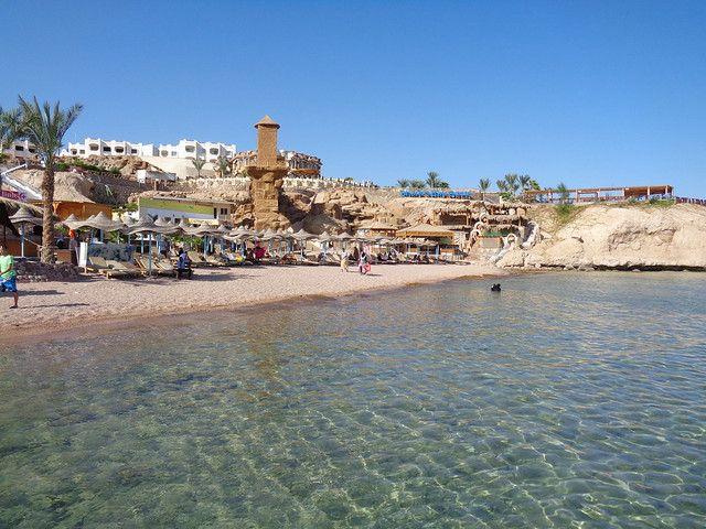 شاطئ القروش شرم الشيخ