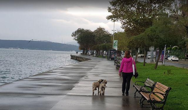 ترابيا اسطنبول