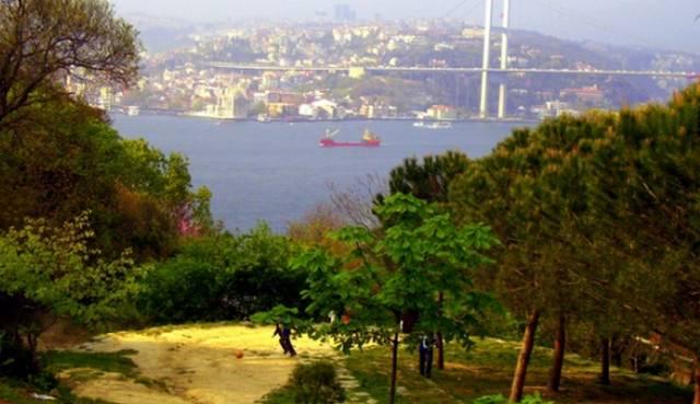 تُظلل الأشجار الغابة في منتزه فتحي باشا اسكودار اسطنبول لتُخرج منظر رائع