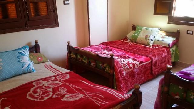 إلى جانب الفنادق في مدينة أسوان المُختلفة تمتلك المدينة الجميلة باقة من شقق الإيجار، تعرّفوا عليها.