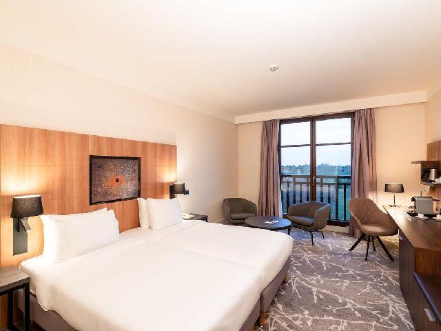 غرفة قياسية تتسع لشخصين في فندق راديسون بلو ديزني باريس أحد فروع فندق راديسون بلو باريس
