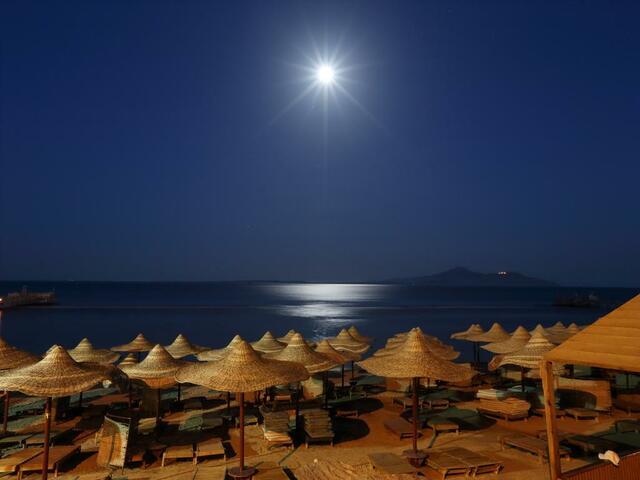 تمتع بإطلالة مميزة شاطئية في فندق ريحانة شرم الشيخ
