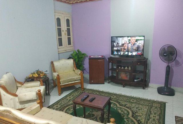 تقرير يشتمل كافة المعلومات عن افضل فنادق بالشاطبى الاسكندرية