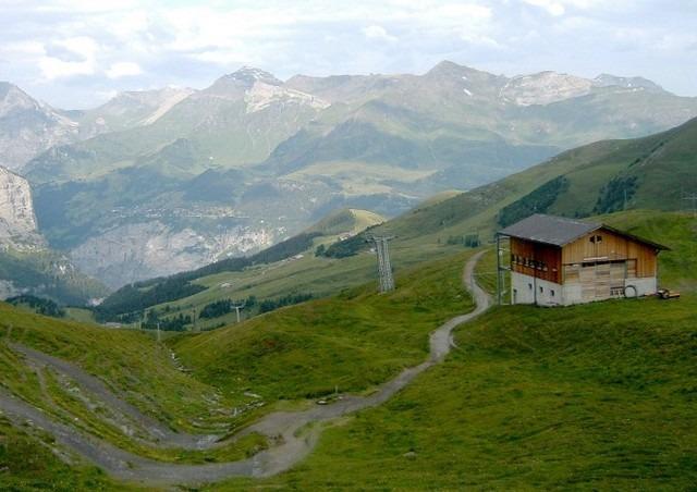 توفر زيارة قرية وينجن بسويسرا متعة لا تنتهي حيث مُشاهدة الطبيعة والجبال