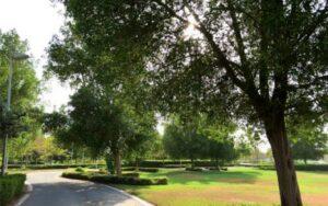 حديقة المنتزه الجنوبي ابوظبي